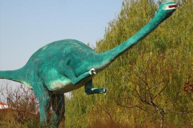 安徽省重大发现:恐龙也有盐腺