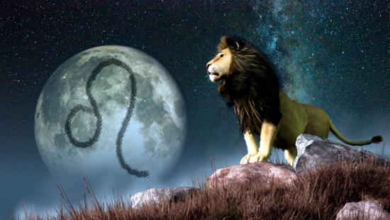狮子座对你是真害羞or没兴趣