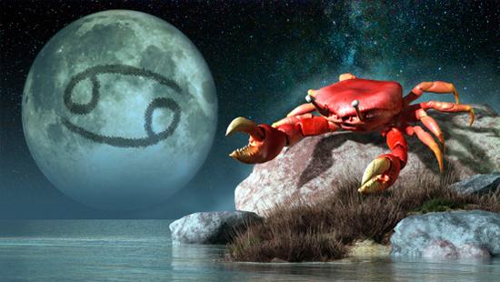 巨蟹座对你是真害羞or没兴趣
