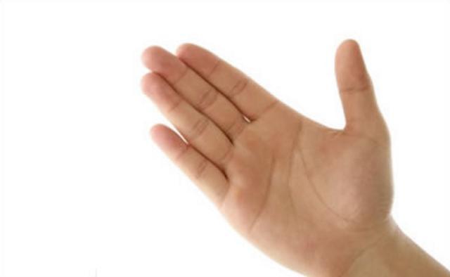 这六大手相生来就注定不缺钱|手相|手掌|财运