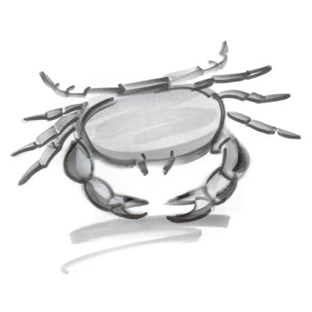 水星逆行对巨蟹座的影响