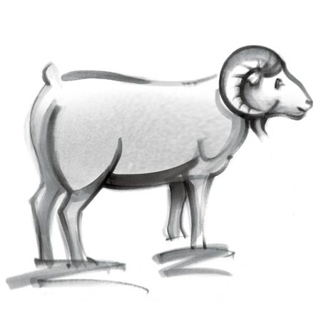 防狼手册之白羊座