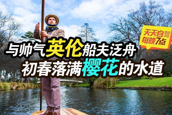 自驾|与英伦帅船夫泛舟在铺满樱花的水路