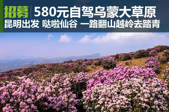 招募|580元起自驾哒啦仙谷、乌蒙大草原