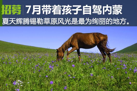 周末去哪:680元自驾内蒙锡林郭勒大草原