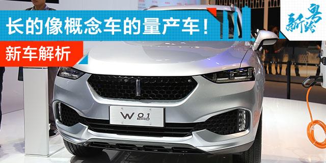 长城豪华品牌 解读概念SUV WEY 01