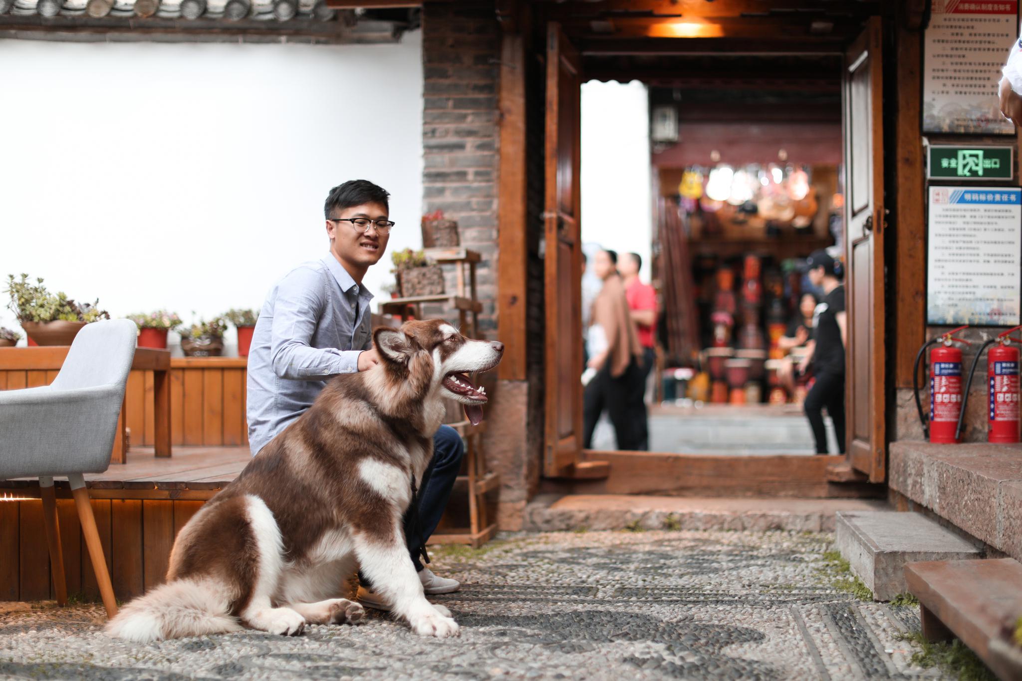 街旁的客栈里,店主和爱犬
