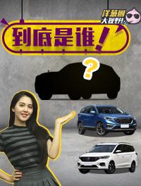 选配的价格都比大奔贵!哪款新车这么横?