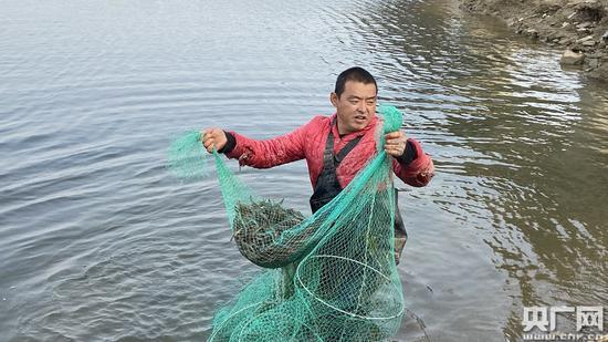 """天津市多管齐下、""""一河一策""""打响碧水保卫战 12条入海河流基本消除劣五类"""