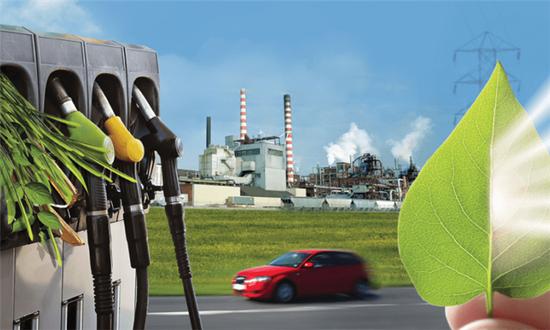 伊利诺伊大学使用能源甘蔗制作生物柴油
