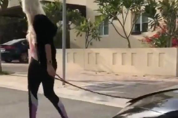 视频:上街溜这样的宠物真是美梦成真!