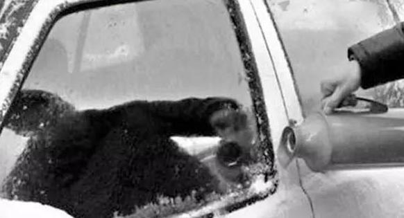 8项暖车秘籍!分分钟解决冬天用车烦恼_车猫网