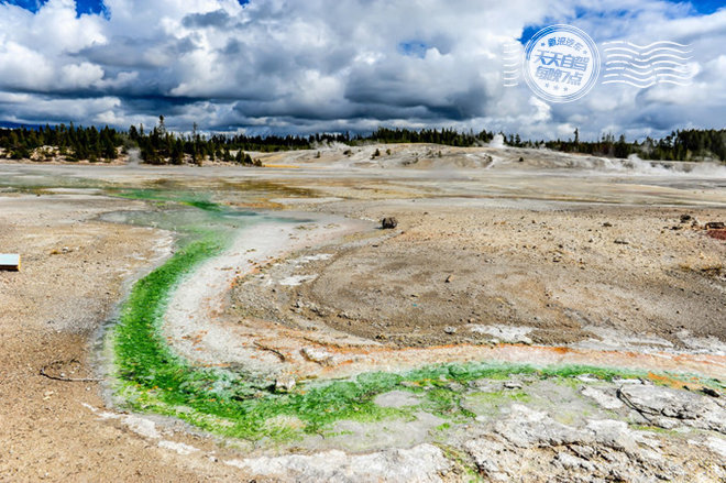 细菌和藻类的颜色其实是由水的温度决定的