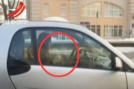 视频:边开车边织毛衣!快躲开这女司机