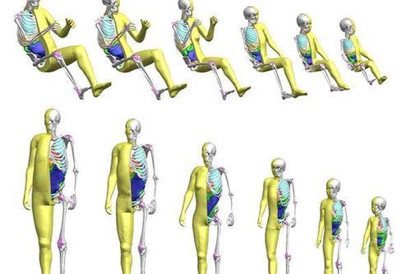 丰田将儿童模型加入虚拟轿车碰撞测试