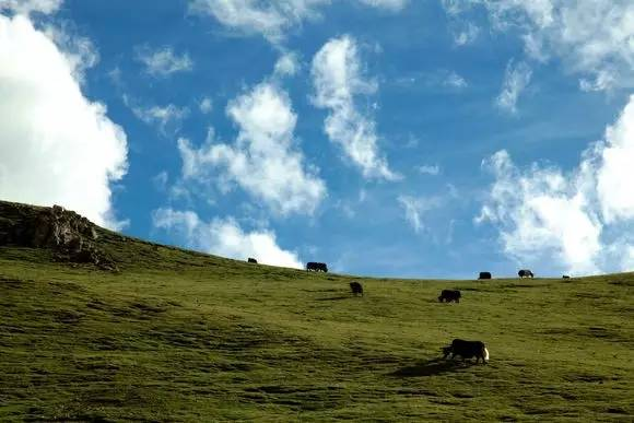 8600km 三个男人开着奥拓自驾去西藏(下)