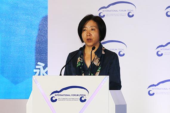 宋秋玲:建立新能源汽车市场长效机制