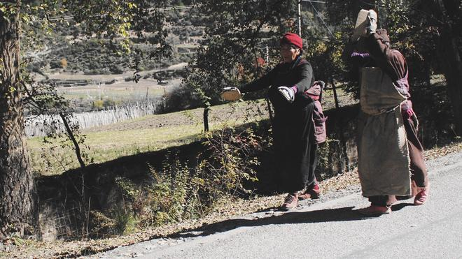 撼心之旅,与九色甘南来一场深秋的约会