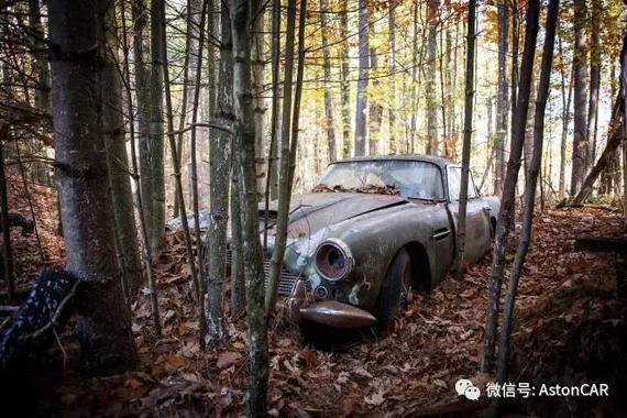 一辆被废弃在野外40年的阿斯顿·马丁DB4