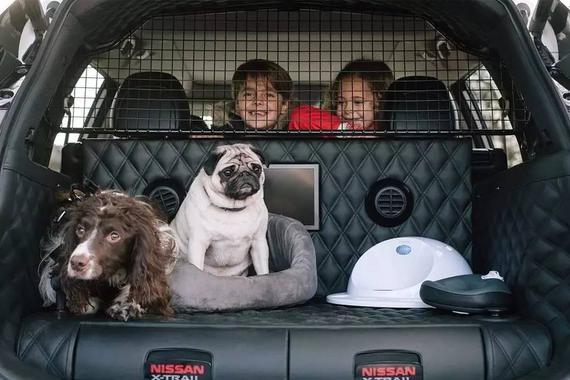 日产竟敢群嘲单身狗?推奇骏4 DOGS版本