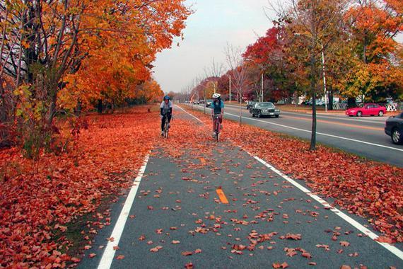 堵堵堵堵!这些地方都在为自行车架专用高速公路