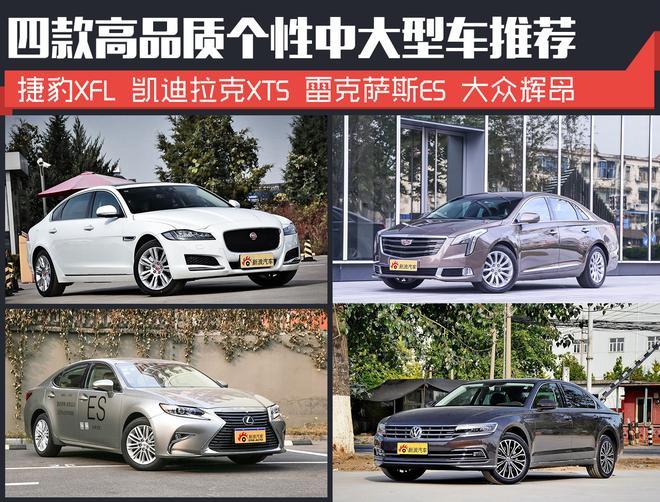 商务兼家用 四款高品质个性中大型车推荐