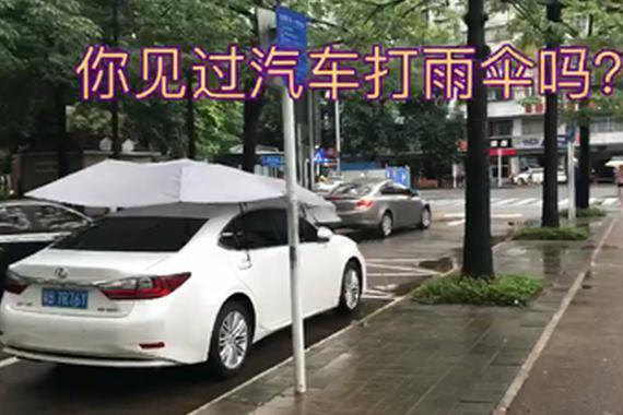 视频:在路上你见过汽车打雨伞吗?
