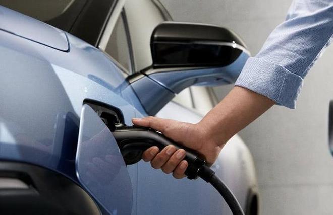 新能源汽车市场遇冷:造车新势力如何跨越寒冬?