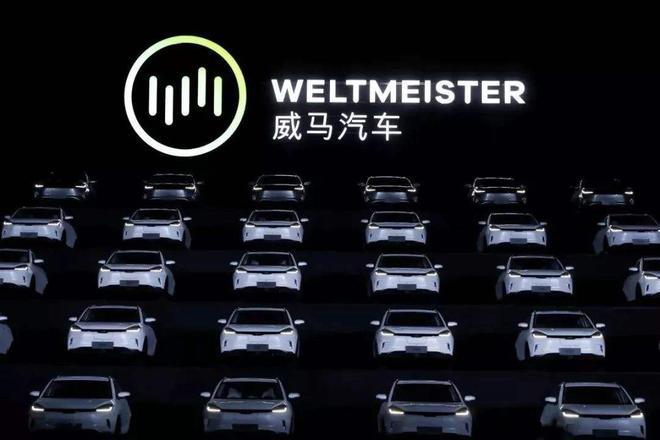 威马汽车捐助400万元物资 支援湖北省黄冈市防疫工作