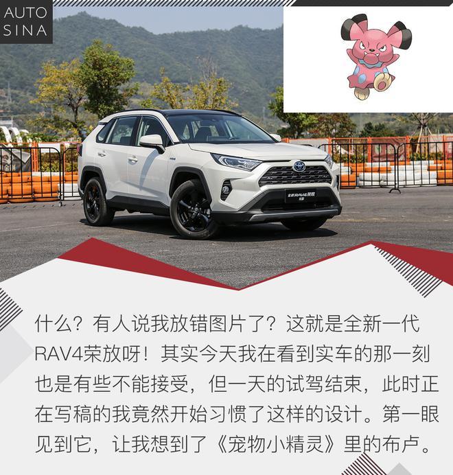 全身细胞的更新 试驾全新一代RAV4荣放