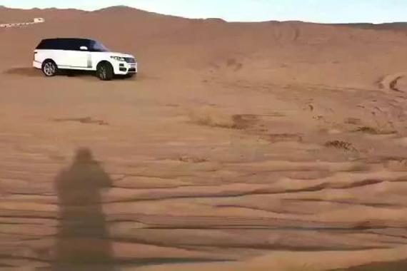 谁说沙漠中的揽胜是只猫?