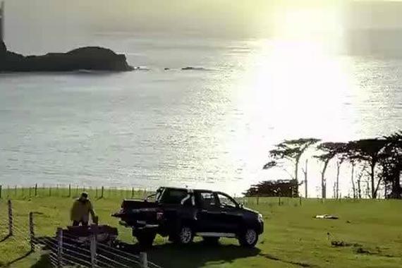 视频:当男人失去他的丰田Hilux之后?