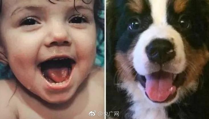 宝宝和小动物的撞脸照 超暖超有爱