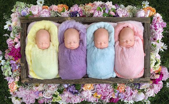 加拿大四胞胎宝宝排排睡萌照