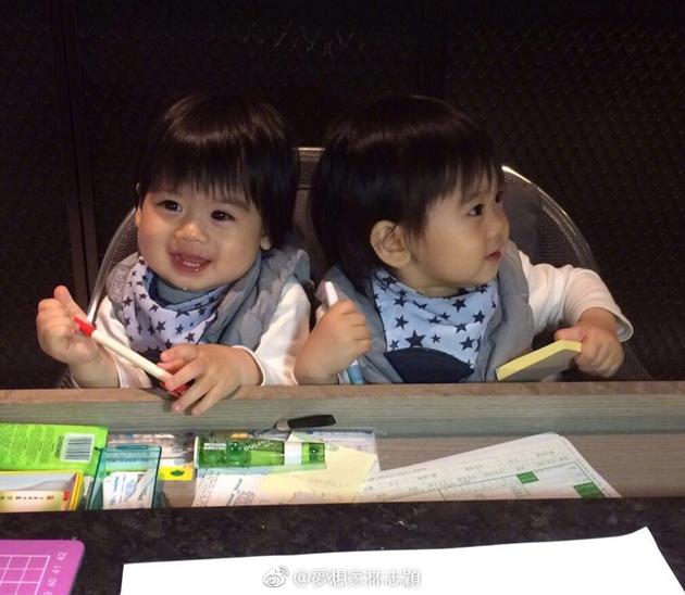 林志颖双胞胎儿子
