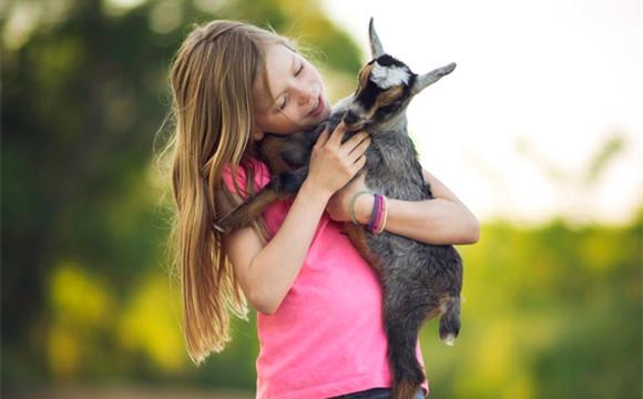 温馨!当童年有了小动物的陪伴