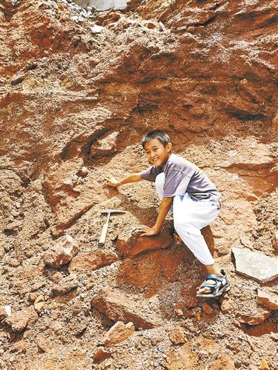 张仰喆发现6600万年前恐龙蛋化石