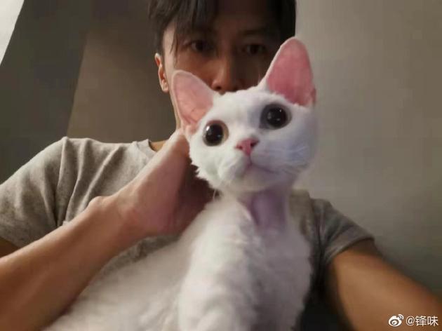 谢霆锋晒与爱猫合影