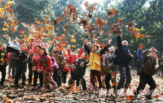 图说:秋日里走进自然的孩子们 杨建正 摄
