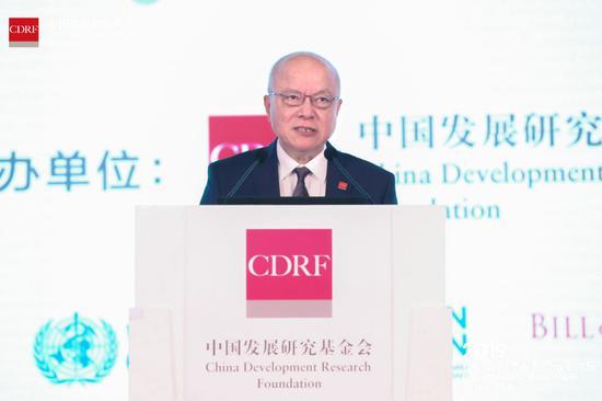 中国发展研究基金会副理事长卢迈