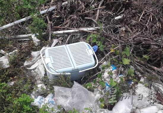 女婴被狠心的父母放在一个篮子里,遗弃在垃圾堆中(资料图)
