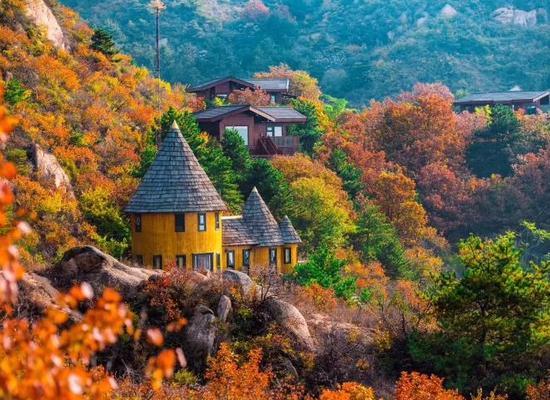 1、北京云峰山童话树屋