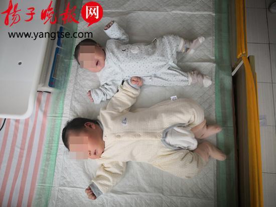 与普通婴儿相比,壮壮(左)明显大出一截。 刘威 摄