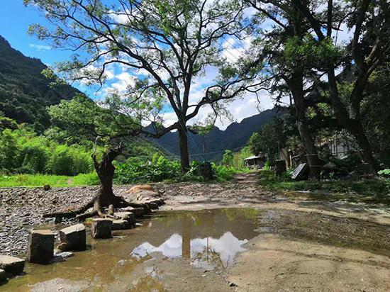 9月上旬,刚下了一场雨,山里的农庄也变得清澈透明。文中图片均为 澎湃新闻记者明鹊 摄