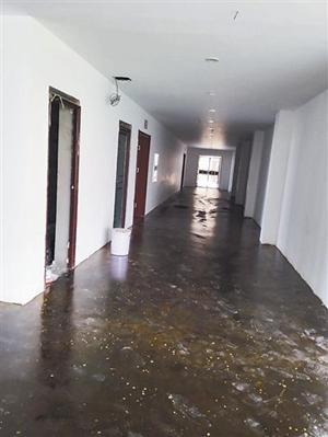 教室走廊地面刷上了涂料