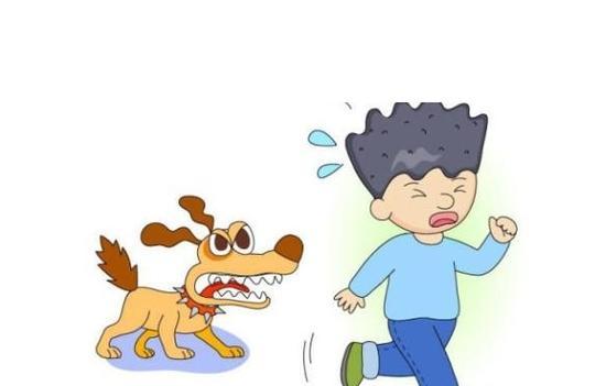 7岁男童上学路上遭3烈犬撕咬  与狗相遇怎么做