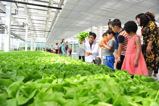 中粮凭借智慧农场继续引领农业产业化之路