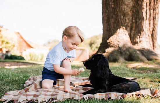 乔治小王子喂狗狗