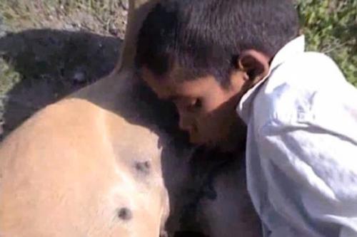 男孩喝狗奶成瘾6年 附近流浪狗都被吸怕了