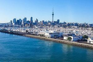 新西兰工党:应禁止留学生等海外买家购房